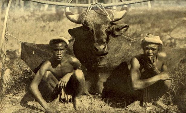 1906 - Indochina - Middle Degar.jpg