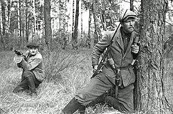 250px-Soviet_guerilla.jpg