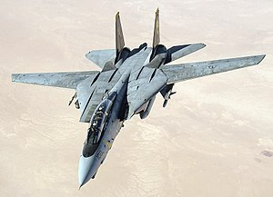 300px-US_Navy_051105-F-5480T-005_An_F-14D_Tomcat_conducts_a_mission_over_the_Persian_Gulf-region.jpg
