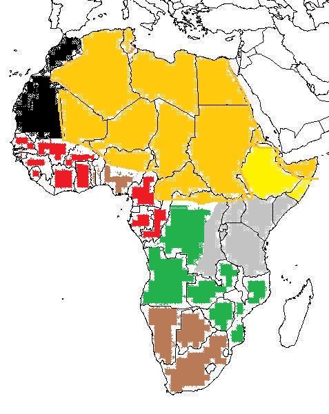 africa (1).jpg