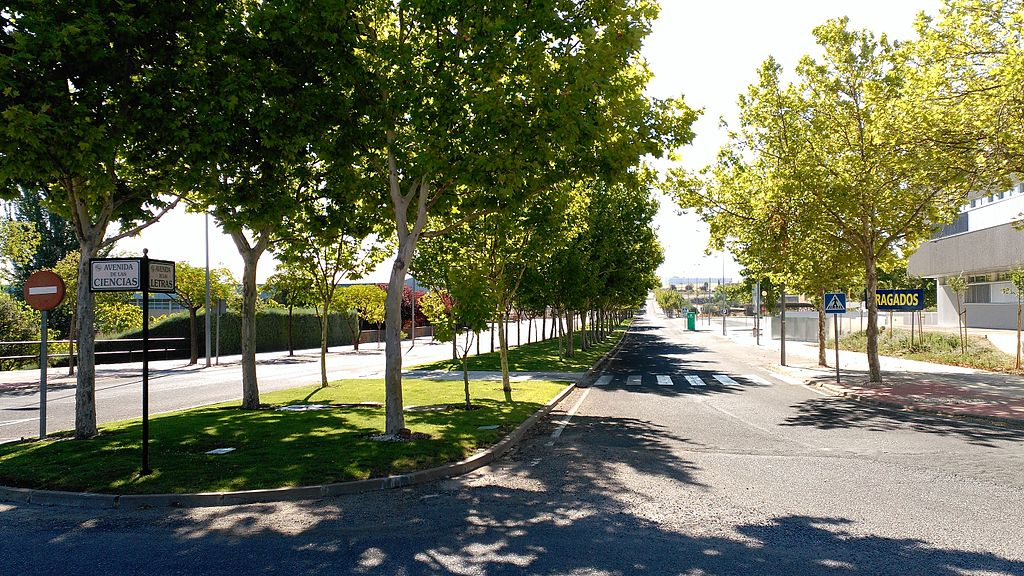 Avenida_de_las_Letras_-_Campus_de_Cáceres.jpg