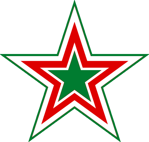 Belarus Air Force roundel proposal.png