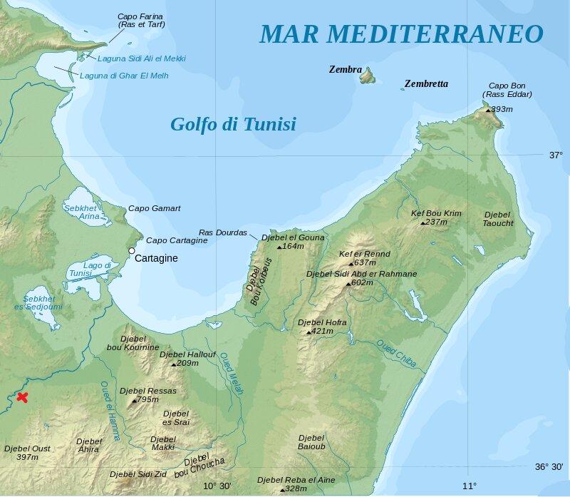 Cartago_location_map_it.svg.jpg