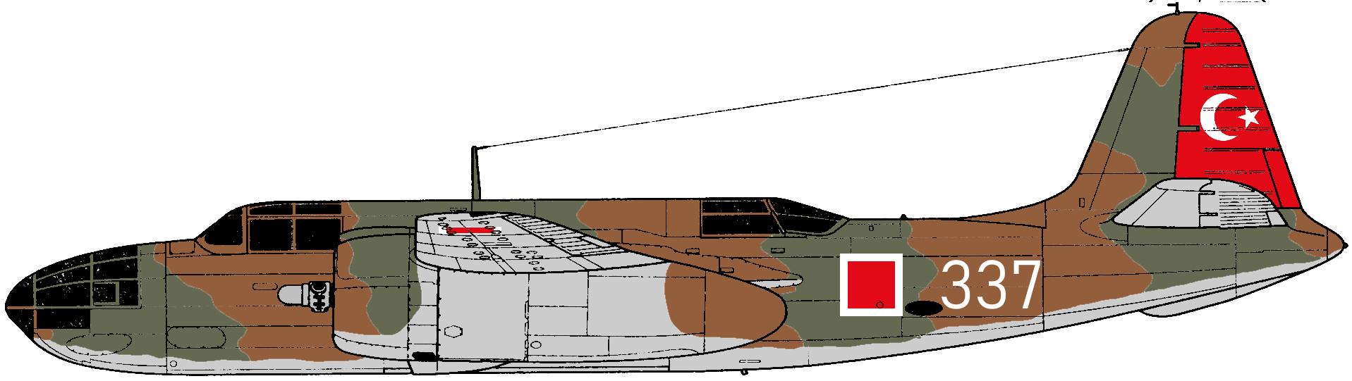 DB-7.png