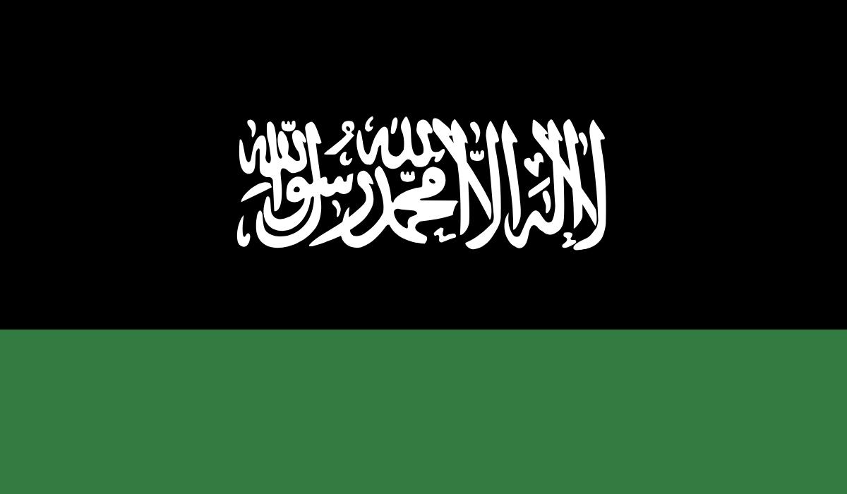 fakeflag-jo3-sa1-pi3.png