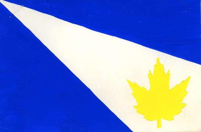 flag-light.jpg