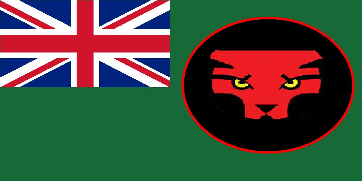Flag of Wakanda.png