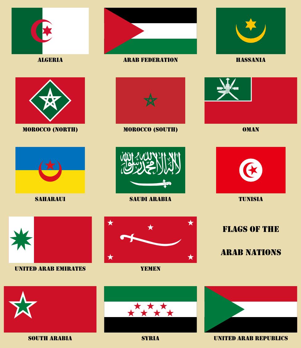 Flag Panel - Arab World - Smaller.png