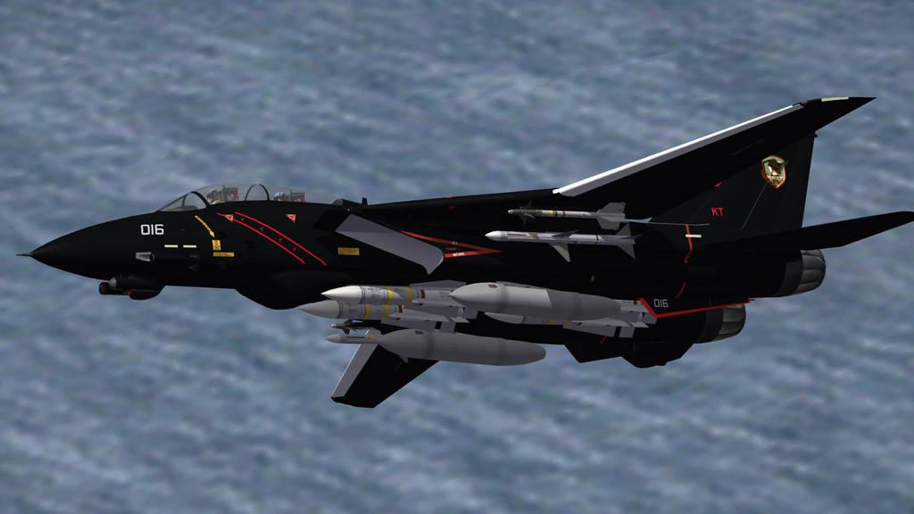 ghosts_of_razgriz_f_14_strike_fighters_2_by_ericj562_d5wropk-fullview.jpg