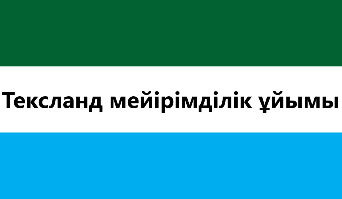 Mercy Organization Flag.png