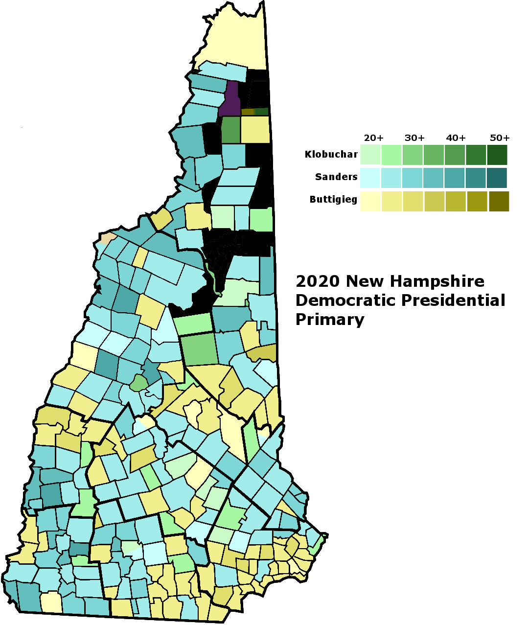 NH 2020 Democratic Presidential Primary.png