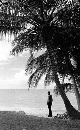 nixon on beach.jpg