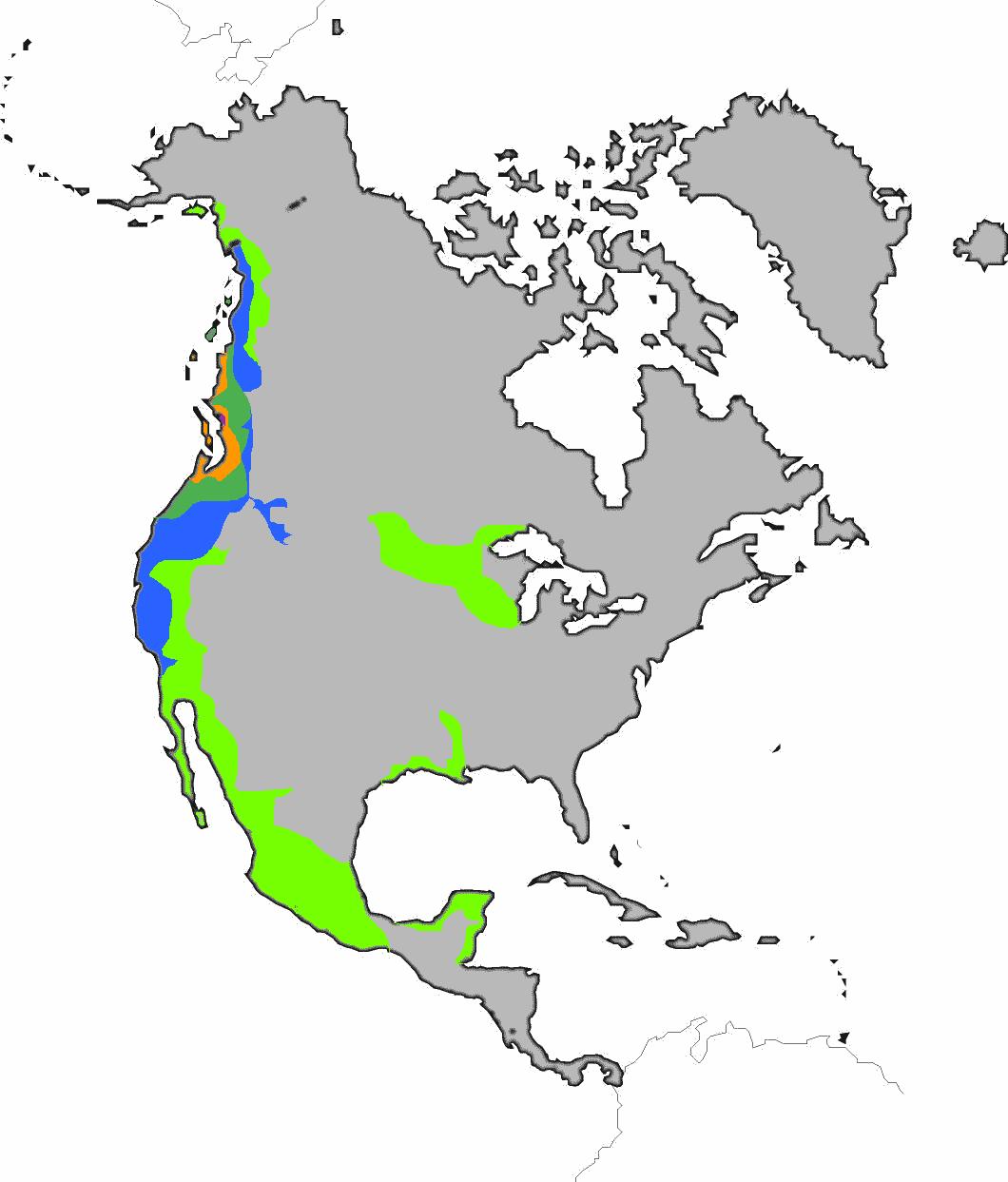 картинки материков земли по отдельности северная америка смотря это