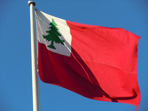 pine-tree-riot-flag.jpg