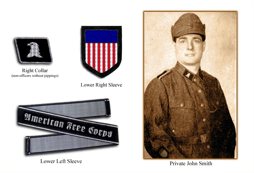 private-insignias.jpg