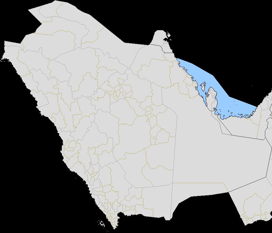 saudi.png