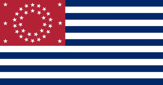 small_American Freedom Party Flag.jpg