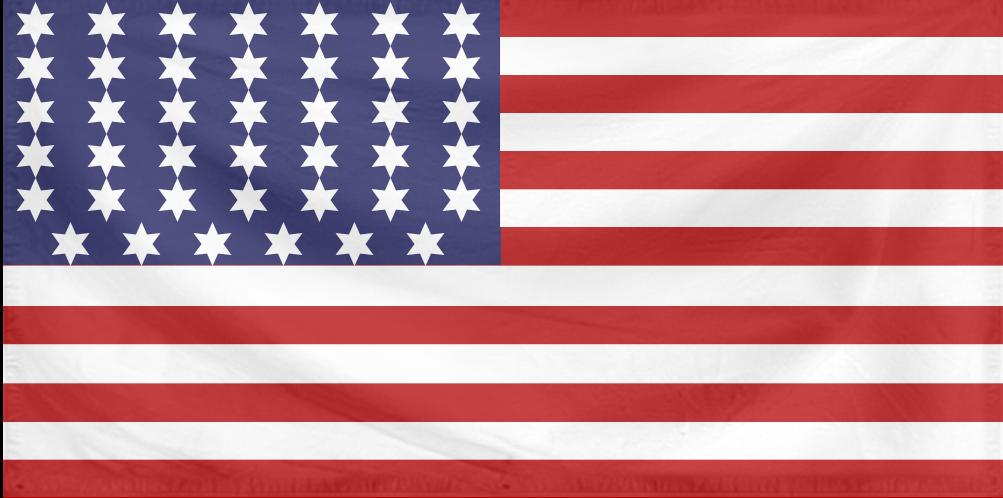 U.S. Flag 10 (1861 - Rebellion-era 41 stars).png