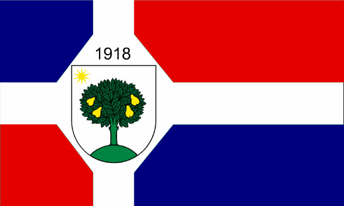 WMIT California first flag.png