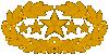 CS general five star.png