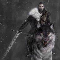 eddardsdirewolf