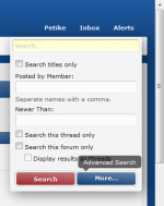 "Click the blue ""More..."" button to access the advanced search options"