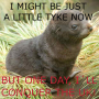 offtopic:sealion_aspirations_meme_petike.png